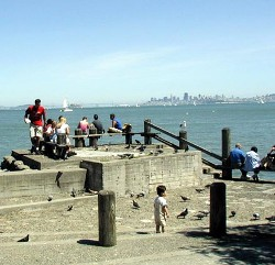 Sausalito-waterfront